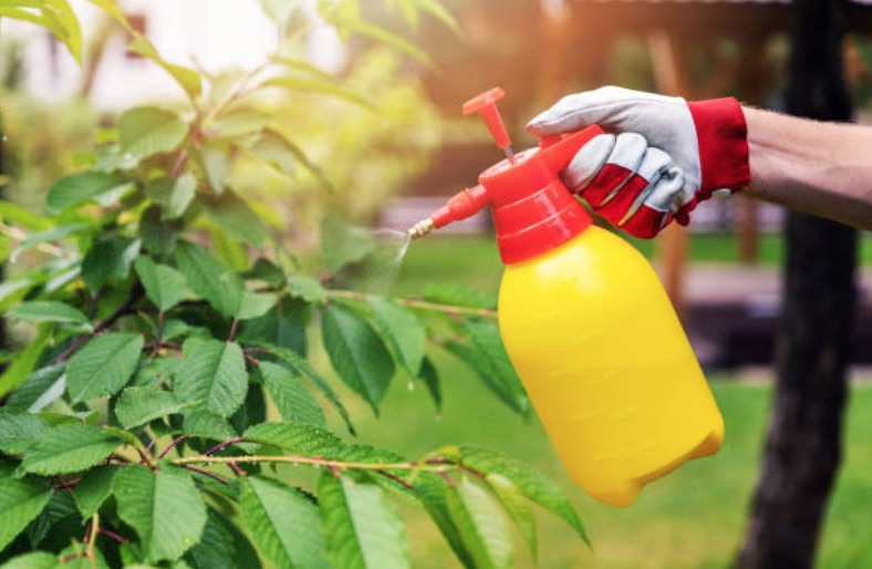 pest control ideas
